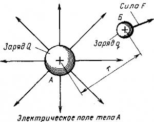 Рис. 6. Схема действия электрического поля на внесенный в него электрический заряд q